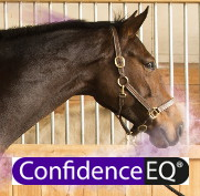 Logo confidence EQ