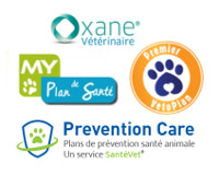 planprevention